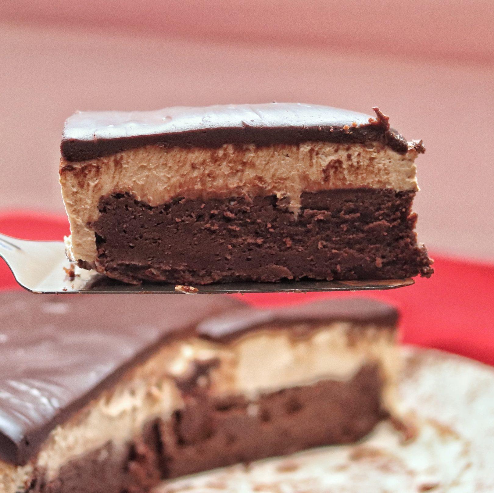 Dense and Creamy Flourless Mocha Cake